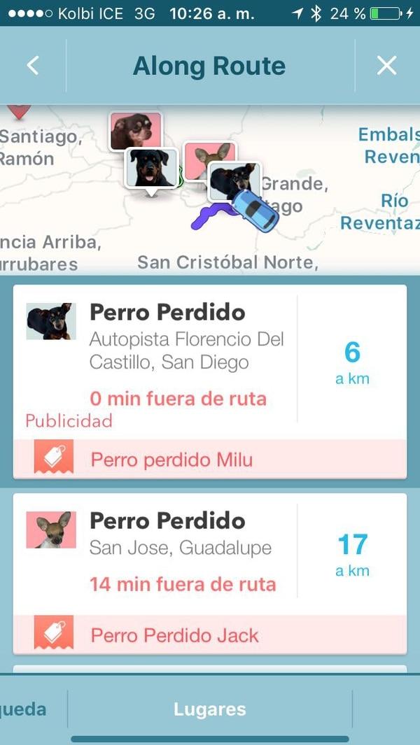 Uno también puede ver información general de los animalitos perdidos. Foto: Captura de pantalla
