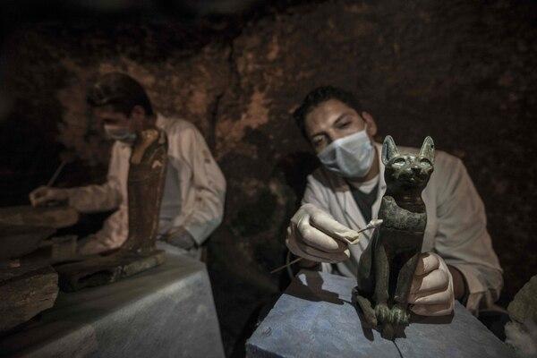 Este fue uno de los gatos que encontraron. Foto: AFP.