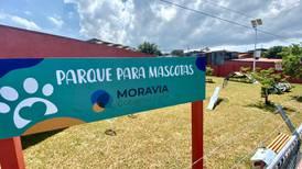 Moravia tendrá muy pronto su primer parque para mascotas