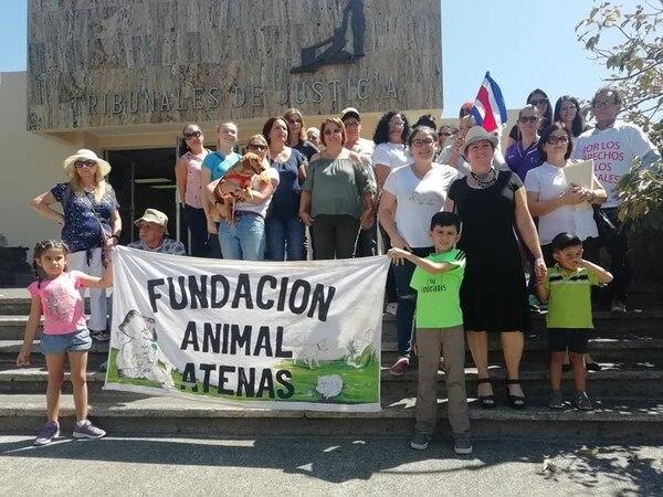 Un montón de gente ha estado apoyando a Campeón durante la recuperación. Foto: Cortesía de Isabel Aguilar.