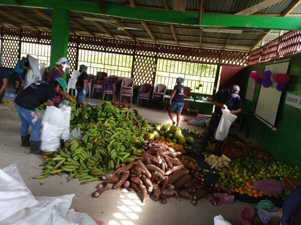 En total se recogieron 10 toneladas de la cosecha Cabécar. Cortesía.