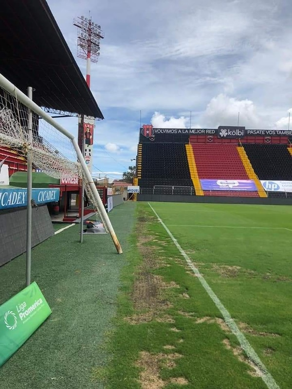 Hacia el sector izquierdo del marco norte del estadio Morera Soto, es donde está el césped que se está cambiando en casa de la Liga. Foto cortesía