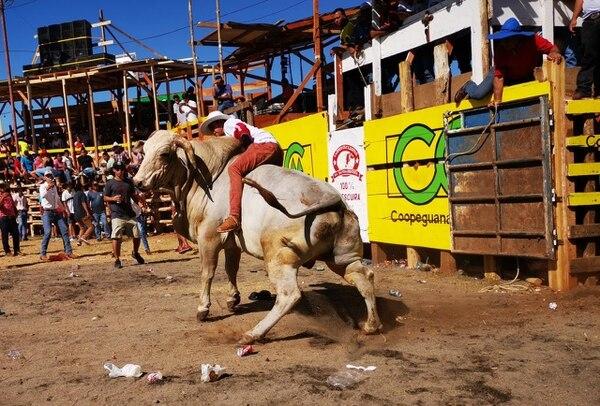 La montadera de toros es una de las actividades más esperadas. Fotos: Deyvi Grijalba