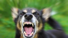 Mascotas pueden ser poseídas por demonios
