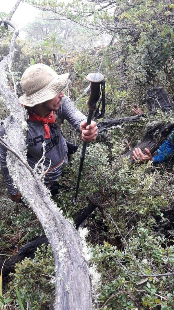 Bastón encontrado en el Chirripó. Foto: Cruz Roja