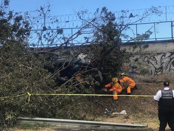 Los bomberos tuvieron que cortar parte del árbol para poder sacar el cuerpo y el carro. Foto: Silvia Coto