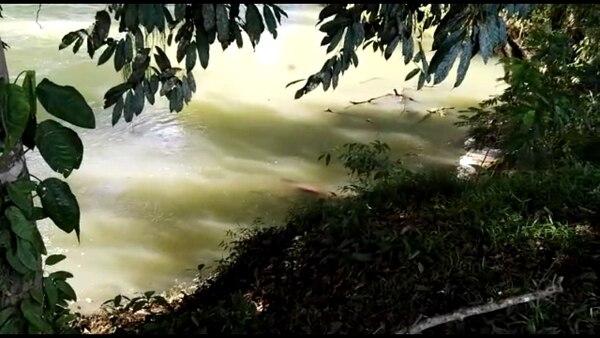 El cuerpo del hombre estaba enredado en unas ramas. Foto: Édgar Chinchilla.