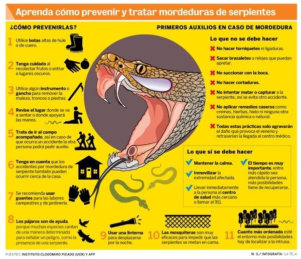 Infografía sobre qué hacer en caso de mordeduras de serpientes.