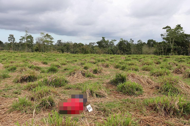 El cuerpo de José Armando Campos Mena fue encontrado por un grupo de trabajadores. Foto OIJ.
