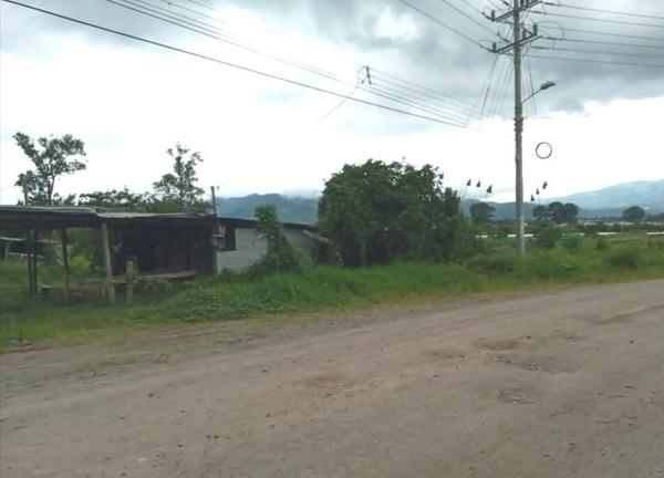 Según el OIJ, Chisco fue encontrado dentro de este terreno por varios vecinos. Foto suministrada por Keyna Calderón.