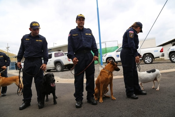 Los oficiales reconocieron a cinco perro en representación del grupo que se retira de las 'canchas'. Foto: MSP.