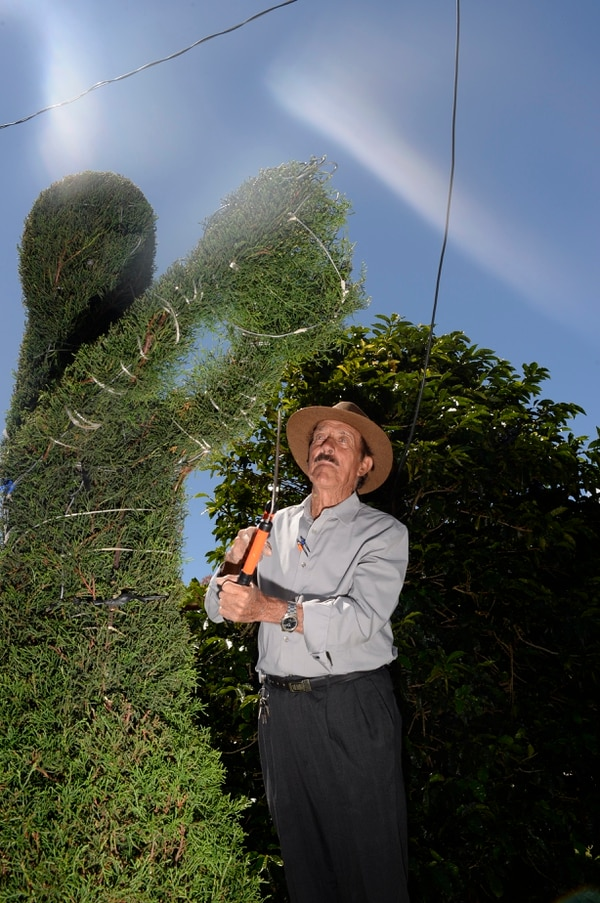 Keylor Navas atrapa la bola en el parque de Zarcero. Don Evangelista es el artista. Foto: Jorge Navarro.