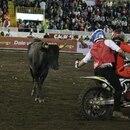 Italo (chaleco rojo) arriesgó el pellejo más de una vez en la arena. Foto: Dayling Pérez.