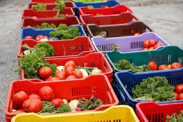Las canastas de verduras esperan a la gente todos los jueves, por estos días se ha tenido que dar más veces porque la necesidad es mucha. Foto Mayela López.