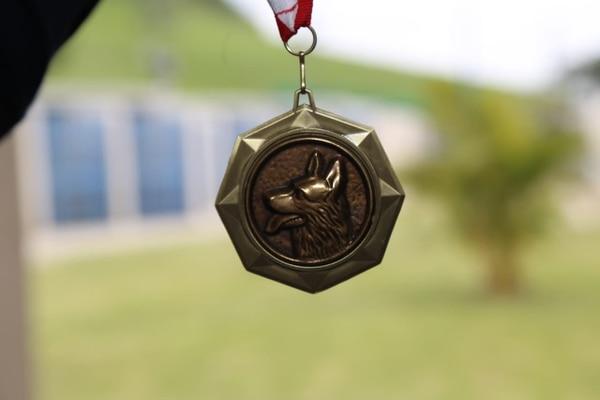 A cada can le dieron una medalla como esta. Foto: MSP.