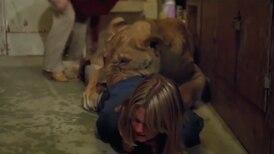 Melanie Griffith vivió una infancia aterradora en medio de leones
