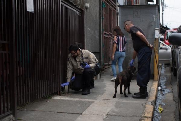 Los perros de la Unidad Canina del OIJ encontraron varias marcas de acelerantes. Fotografía: José Cordero