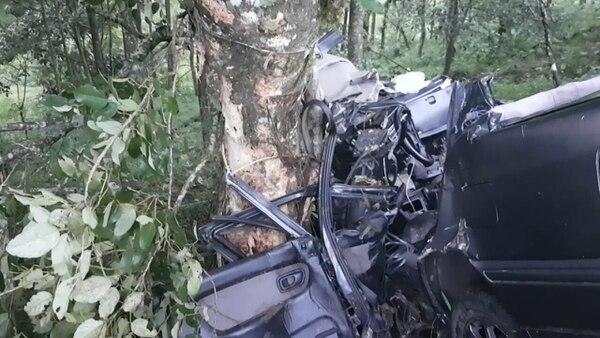 El enorme árbol de poró atajó el carro. Foto: Édgar Chinchilla