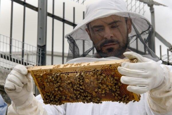 En el documental aprende sobre las labores apícolas. Cortesía.