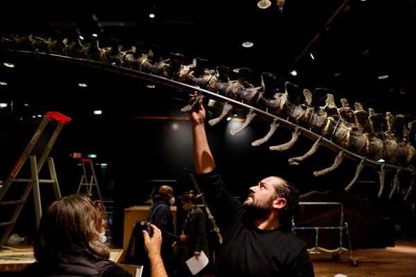 El esqueleto había sido encontrado en Wyoming, Estados Unidos. AFP